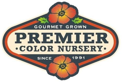 Premier Color Nursery